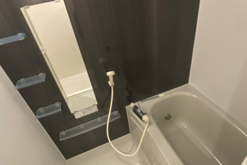 アレーロ大岡山のバスルーム