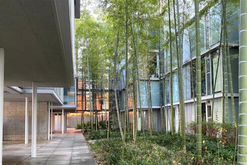 g-flat-courtyard