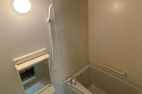 lumiere-senzoku-bathroom