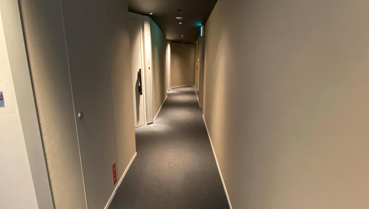 STYLIO旗の台(スタイリオ旗の台)Ⅱの内廊下