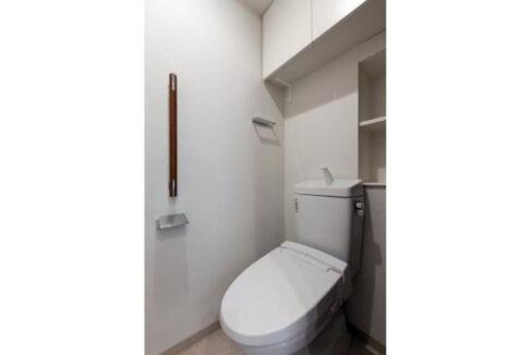 clair-himonya-soare-toilet
