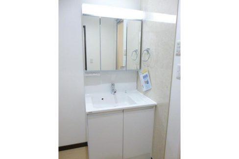 グランエステート大井(オオイ)の独立洗面化粧台