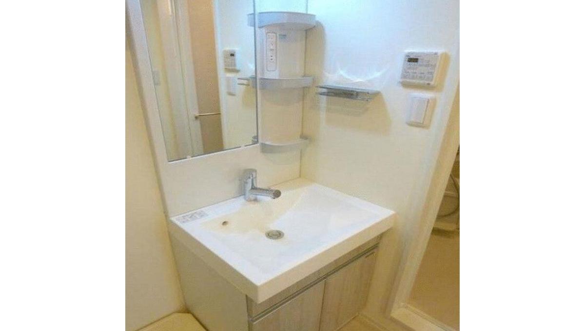 LEGALAND大岡山Annex(オオオカヤマ)の独立洗面化粧台