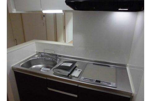 オランジュリー上池台(カミイケダイ)の2口ガスカウンターキッチン