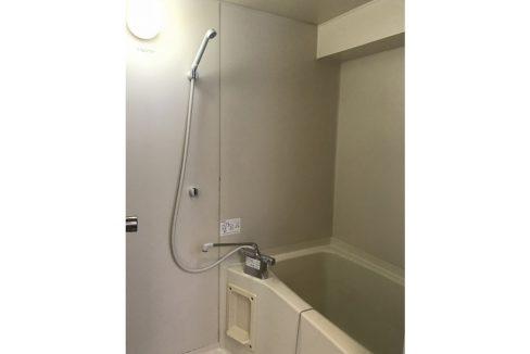 SOCIETY COURT ORIENTAL(ソサイエティ オリエンタル コート)のバスルーム