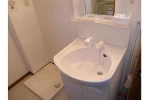 sunnyhill-biverly-wash-basin