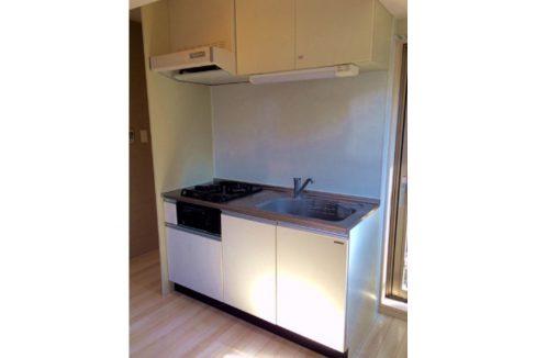 terrace-familia-minoru-kitchen