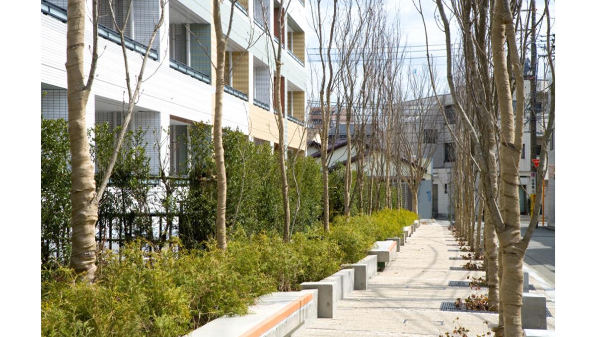 アールブラン大井町ミュゼ(オオイマチ)の緑道