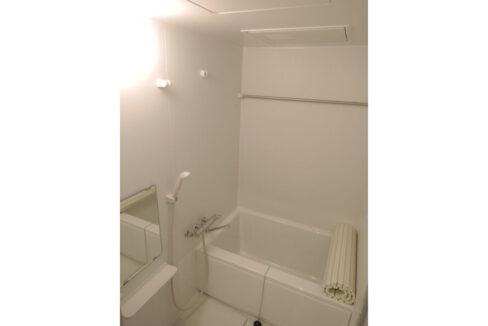 ピオーネのバスルーム