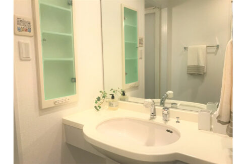 レガリア都立大レジデンス(トリツダイ)の独立洗面化粧台