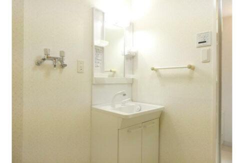 ヴァンヴェール武蔵小山(ムサシコヤマ)の独立洗面化粧台