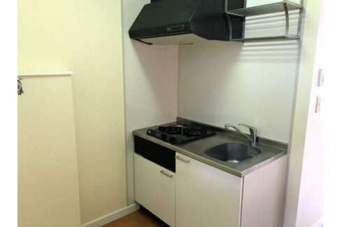 ボニュールアヴニュの2口ガスシステムキッチン