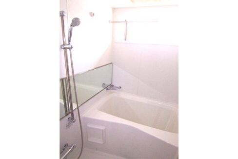 FLEG目黒平町(フレッグ メグロタイラマチ)のバスルーム