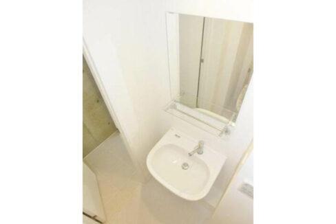 LAPiS不動前(ラピス フドウマエ)の独立洗面台