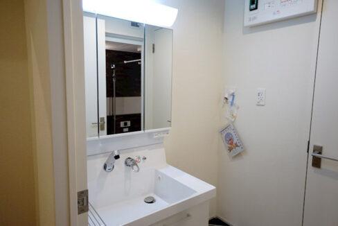 プレミール柿の木坂アネックス(カキノキザカ)の独立洗面化粧台