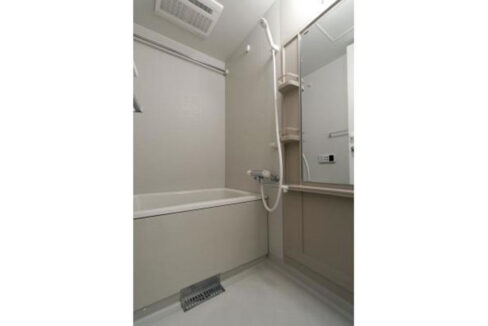 white-front-bathroom