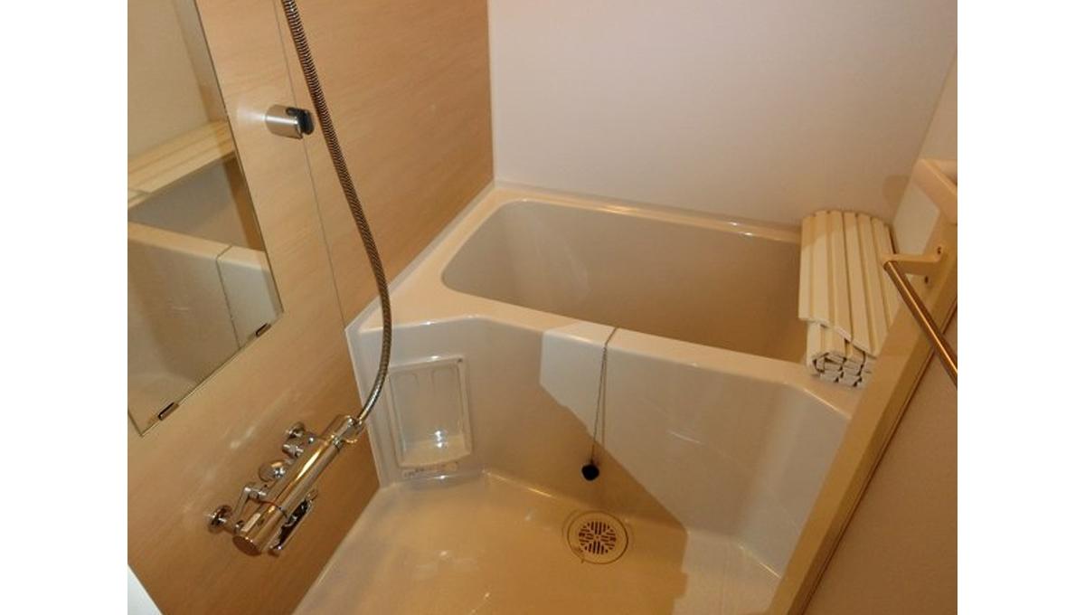 ZOOM 都立大学( ズーム トリツダイガク )のバスルーム