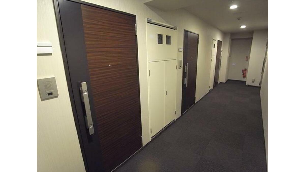 コンシェリア 品川中延(シナガワナカノブ)の玄関ドア