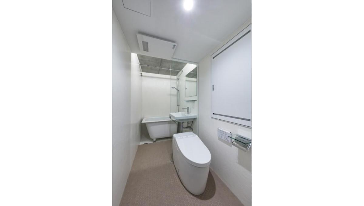 Ookayama Apartment( オオカヤマ アパートメント)の化粧室