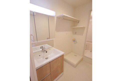 ヘーベルメゾン 大岡山(オオカヤマ)の独立洗面化粧台
