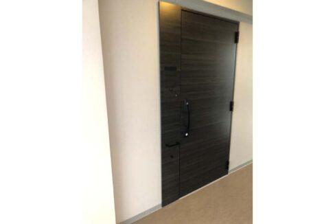 ピアース 武蔵小杉( ムサシコスギ )の玄関ドア