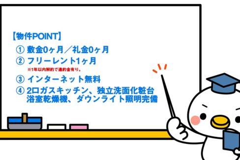 MDM武蔵小山Ⅱ(ムサシコヤマ)の物件ポイント