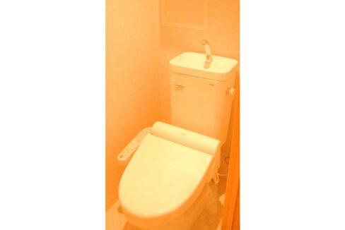 レヨン・エテルネルのウォシュレット付トイレ