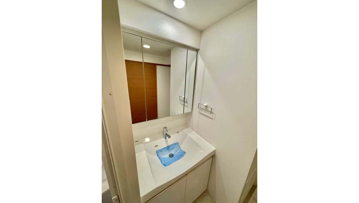 レジディア 大井町Ⅱ( オオイマチ 2)の独立洗面化粧台