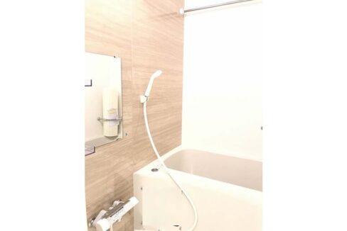 ウェルスクアイズム 上池台(カミイケダイ )のバスルーム