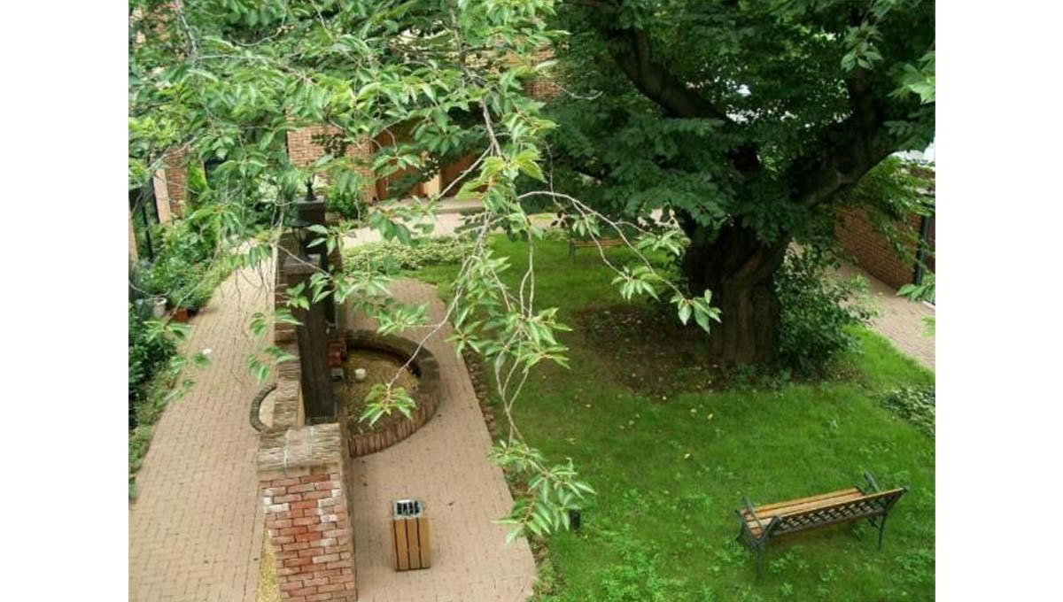 アディールテラス 上野毛 ( カミノゲ )の中庭