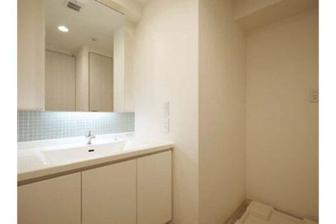 アパートメンツ都立大学(トリツダイガク)の独立洗面化粧台