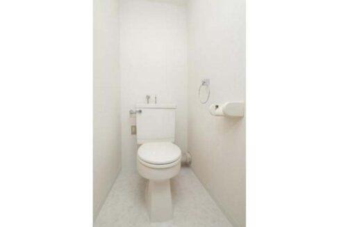 田園調布 スカイライト マンション( デンエンチョウフ )のトイレ
