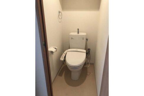 グランハイツ 南雪谷 ( ミナミユキガヤ )のウォシュレット付トイレ