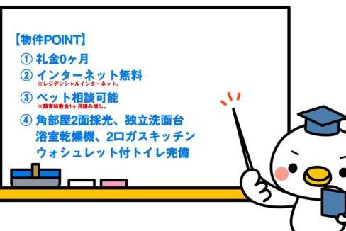 アレーロ大岡山Ⅱ(アレーロ オオカヤマ ツー)の物件ポイント