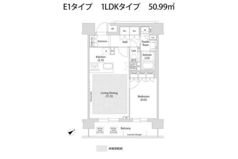 ソアラノーム大岡山(オオカヤマ)の間取図